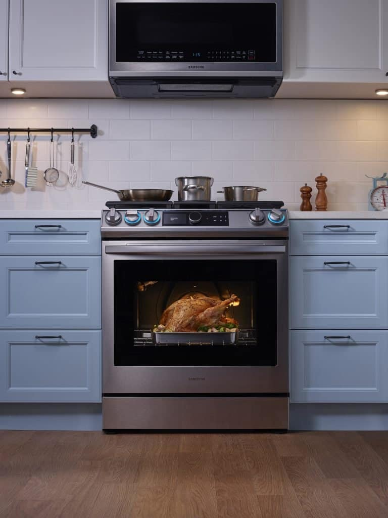 Range oven grilling a scrumptious whole chicken.